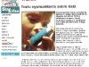gazete_haber_2